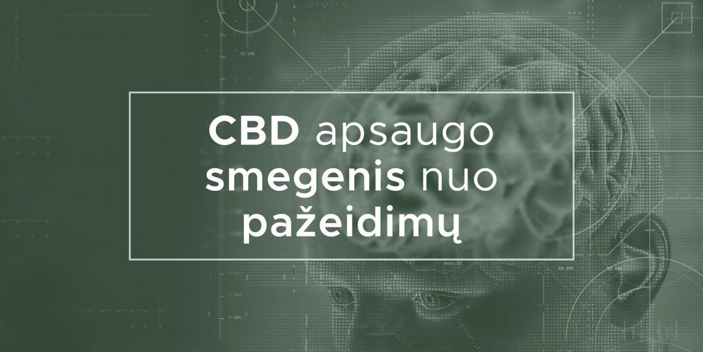 CBD apsaugo smegenis nuo pažeidimų