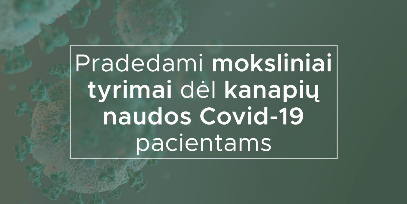Pradedami moksliniai tyrimai dėl kanapių naudos Covid-19 pacientams