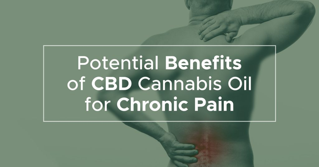Potential benefits of CBD cannabis oil for chronic pain
