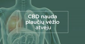 CBD nauda plaučių vėžio atveju | We Are Canna
