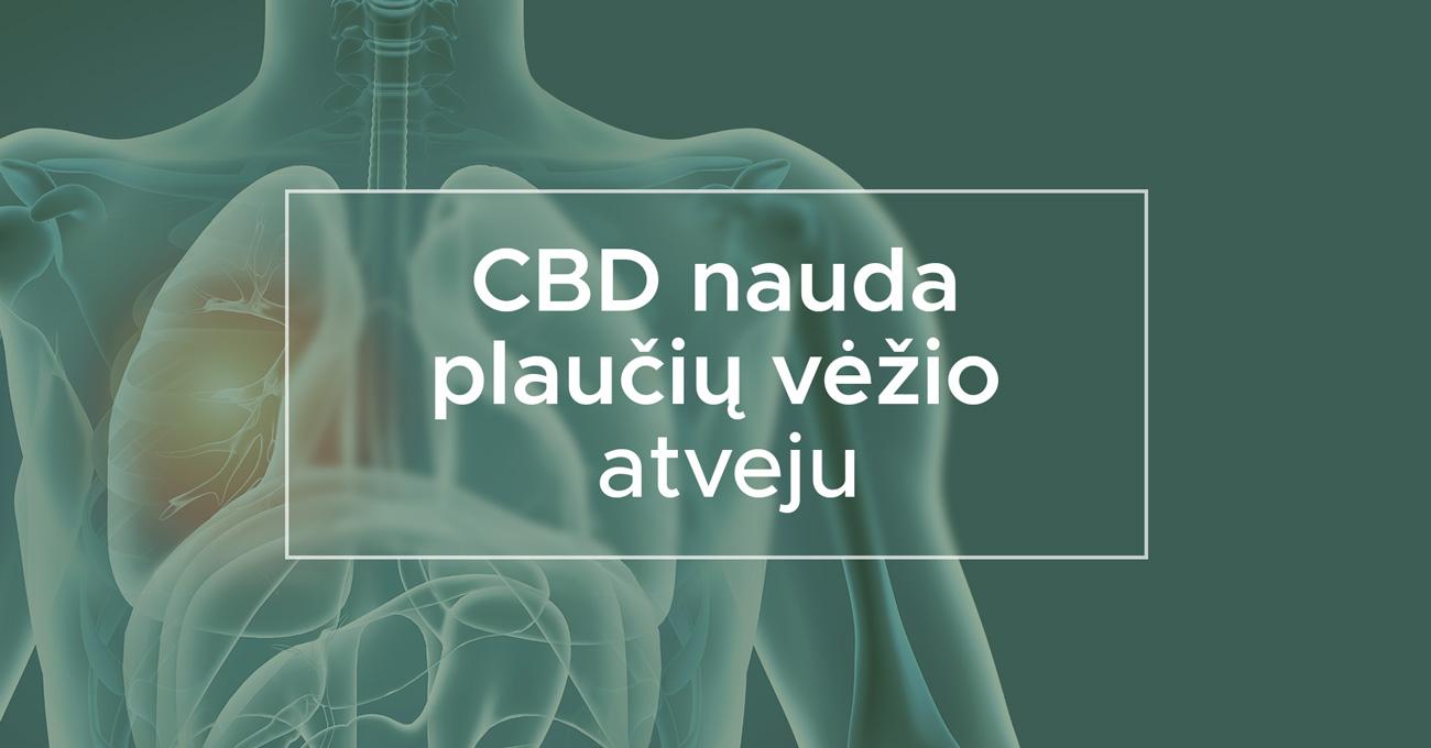 CBD nauda plaučių vėžio atveju   We Are Canna